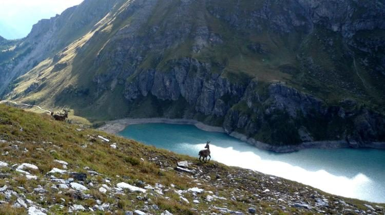 Arrampicata al lago Cignana